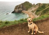 Zara on holiday at Durdle Door